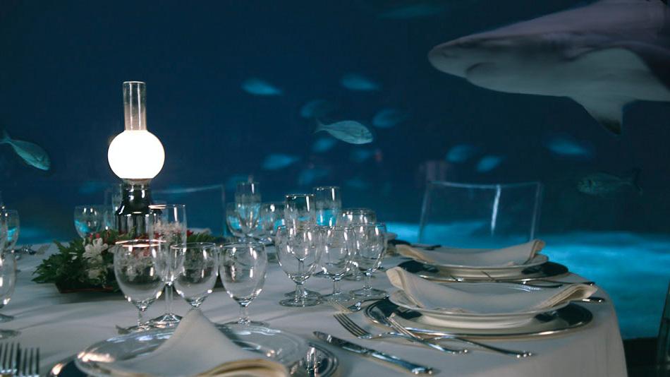 Acquario di Genova evento aziendale tavolo davanti alla vasca dei pesci allestito con centrotavola illuminato tovaglie bianche e sedie trasparenti
