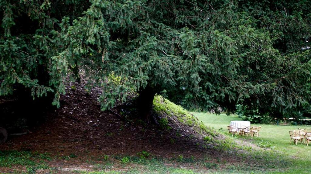 Castello di Giarole